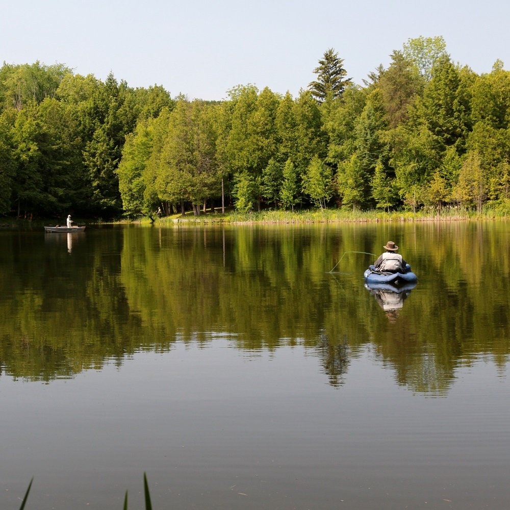 Fly fisherman at Glen Haffy Conservation Area