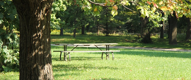 picnic table at Boyd Conservation Area