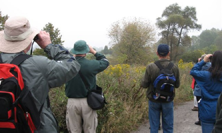 bird watching at Oak Ridges Corridor Conservation Reserve