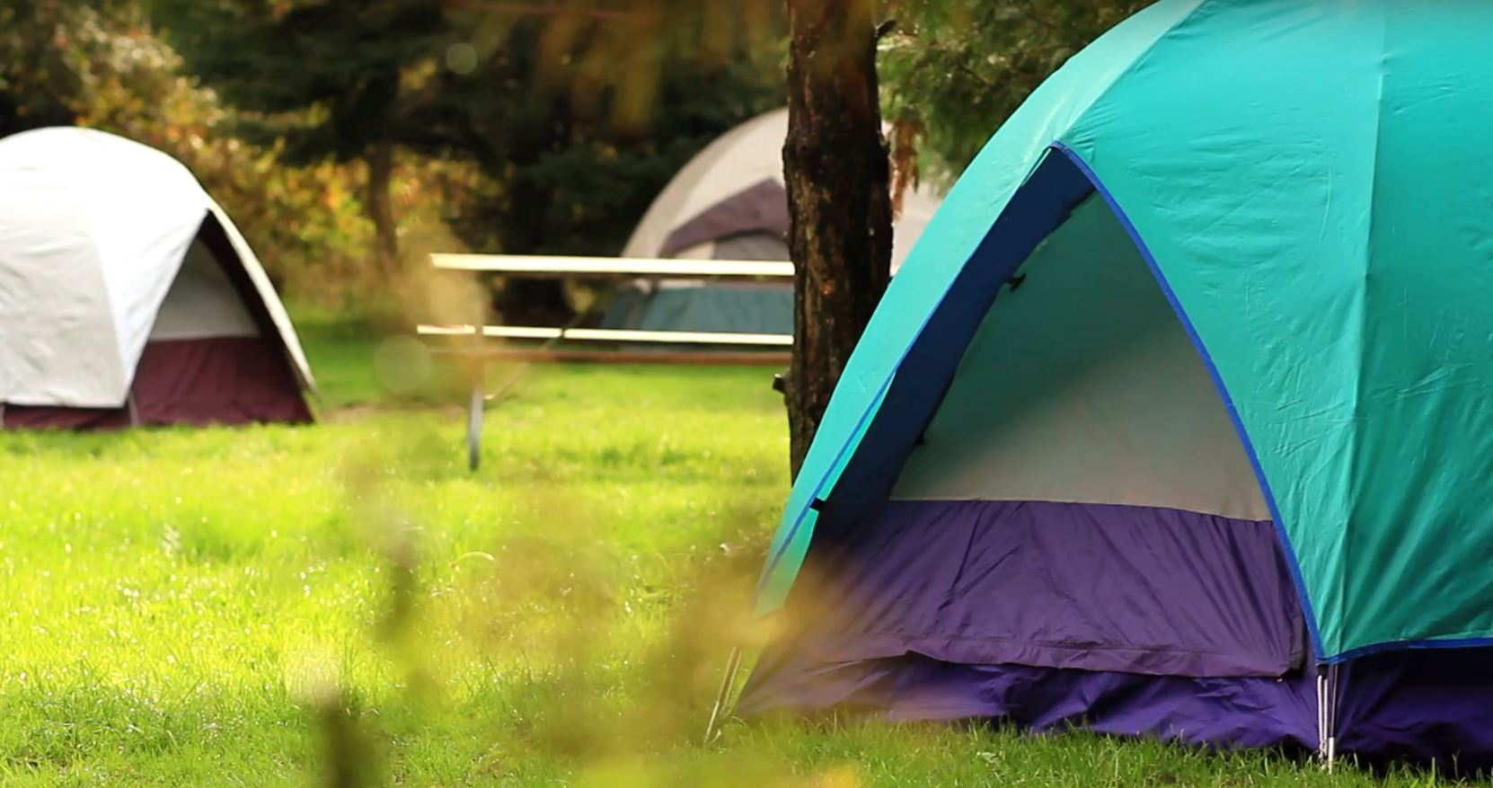 Tents at albion hills campground