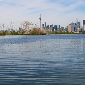 view of Toronto waterfront from Tommy Thompson Park