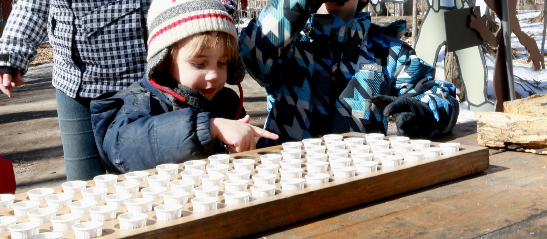 youngsters enjoy the sugarbush maple syrup festival at bruce's mill conservation area