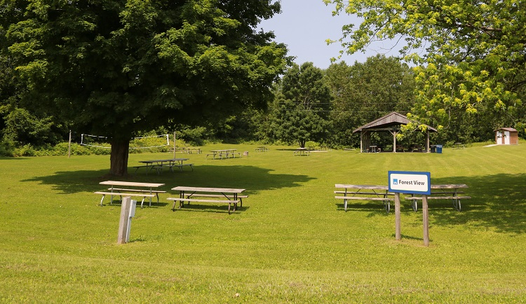 picnic site at glen haffy conservation area