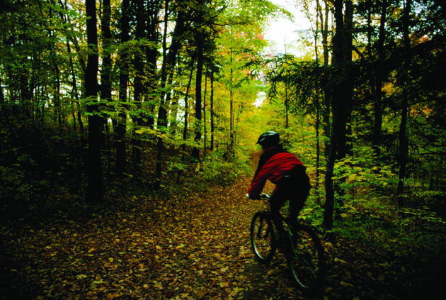 Mountain biking at Albion Hills Conservation Area