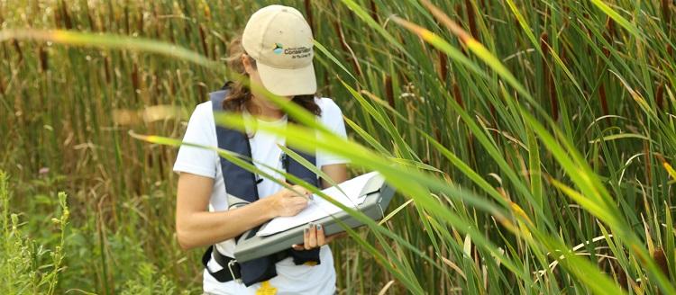 Environmental Monitoring resource library hero image