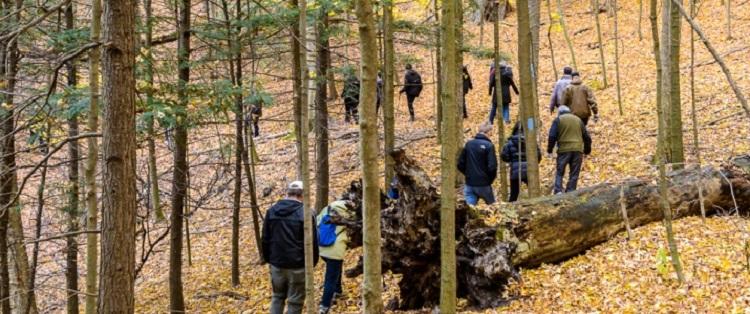 hiking in nashville conservation reserve