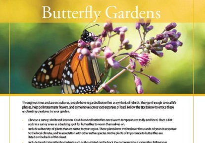 butterfly gardens fact sheet cover page