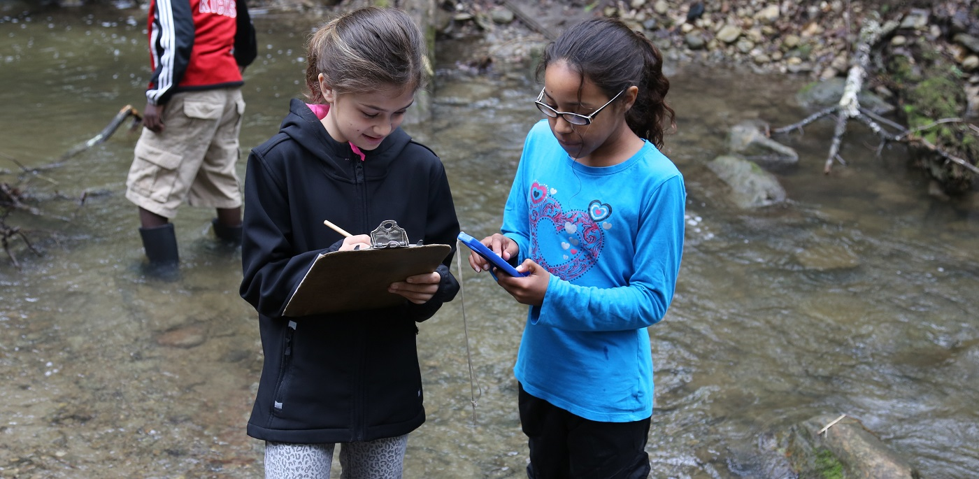 students conduct a stream survey at Claremont Field Centre