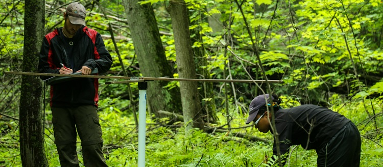 TRCA terrestrial habitat and species monitoring