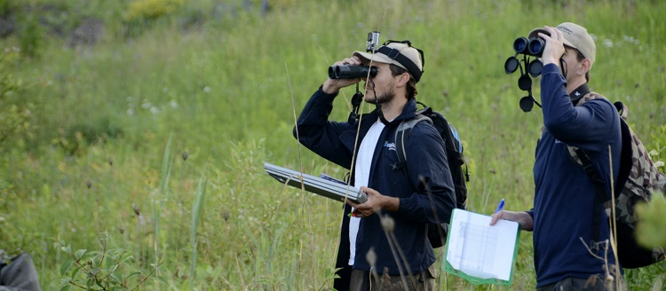TRCA terrestrial monitoring biological inventories