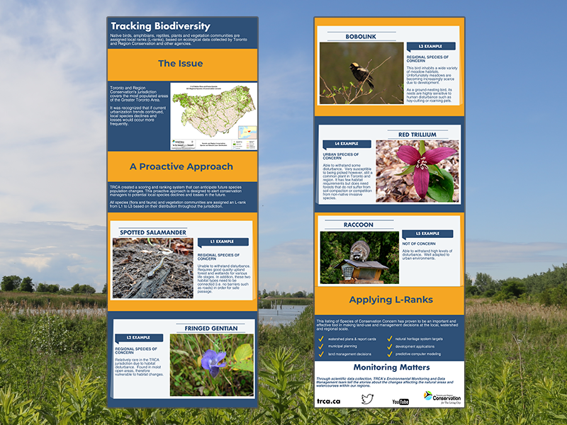 tracking biodiversity infographic