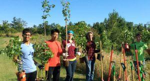 Park Planting with the City of Toronto @ Toronto | Ontario | Canada
