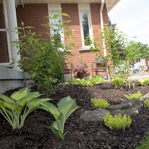 County Court SNAP Green Home Makeover