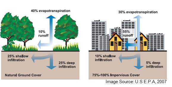 impact of stormwater runoff in urban areas