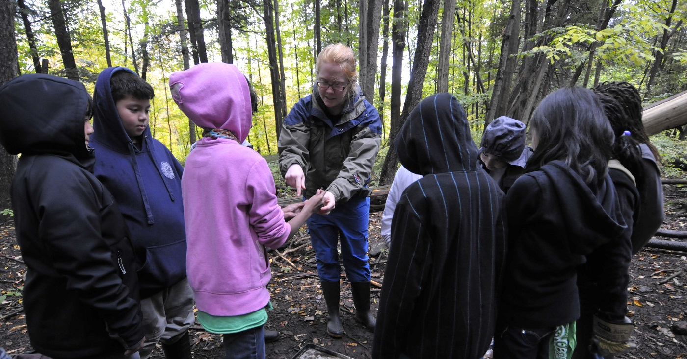 students take part in an educational program at Albion Hills Field Centre