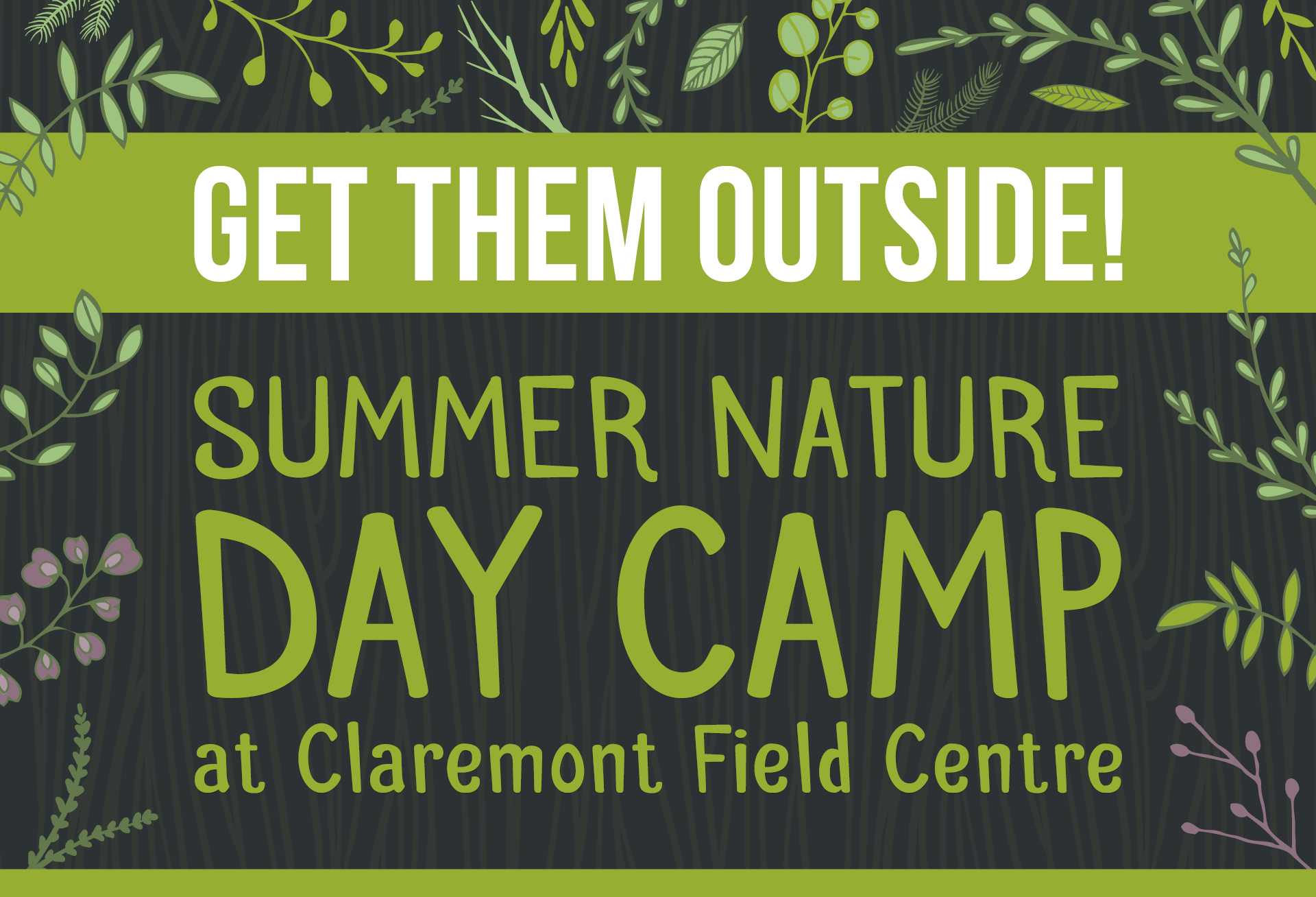 Summer Nature Day Camp at Claremont Field Centre feature image