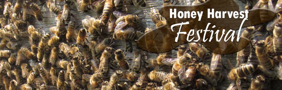 Honey Harvest Festival banner with bees