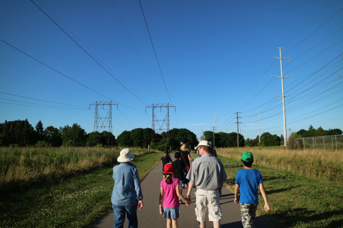 Strolling along the pathway in the hydro corridor