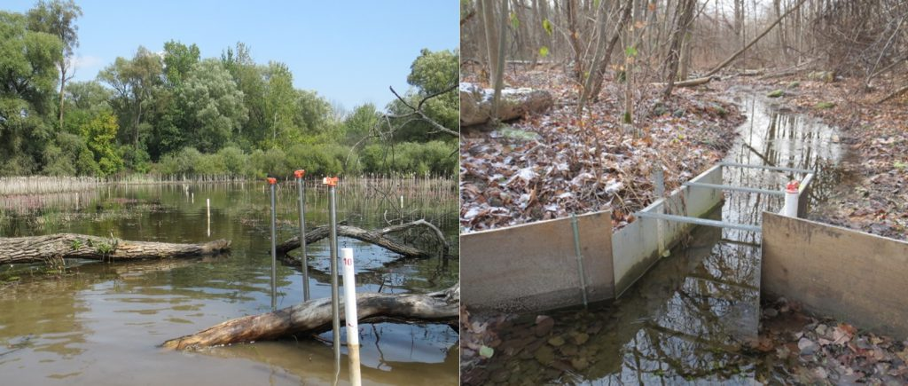 Left: study transect with piezometers; Right: flume measuring surface water leaving a wetland