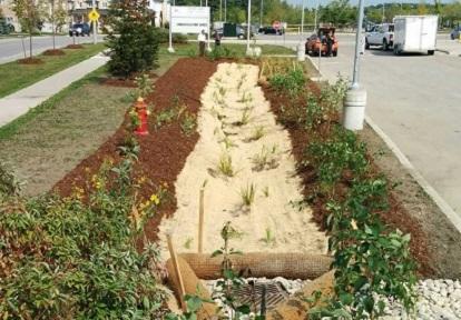 Bond Lake Public School bioswale site after construction