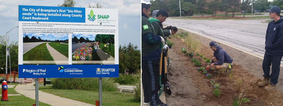 The County Court SNAP community installs a bio-filter swale