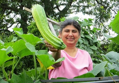 Local resident takes part in Black Creek SNAP Harvest the Rain urban agriculture initiatives