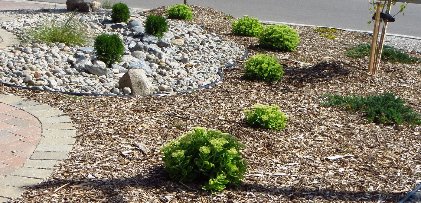 example of eco-landscaping in the Lake Wilcox SNAP neighbourhood