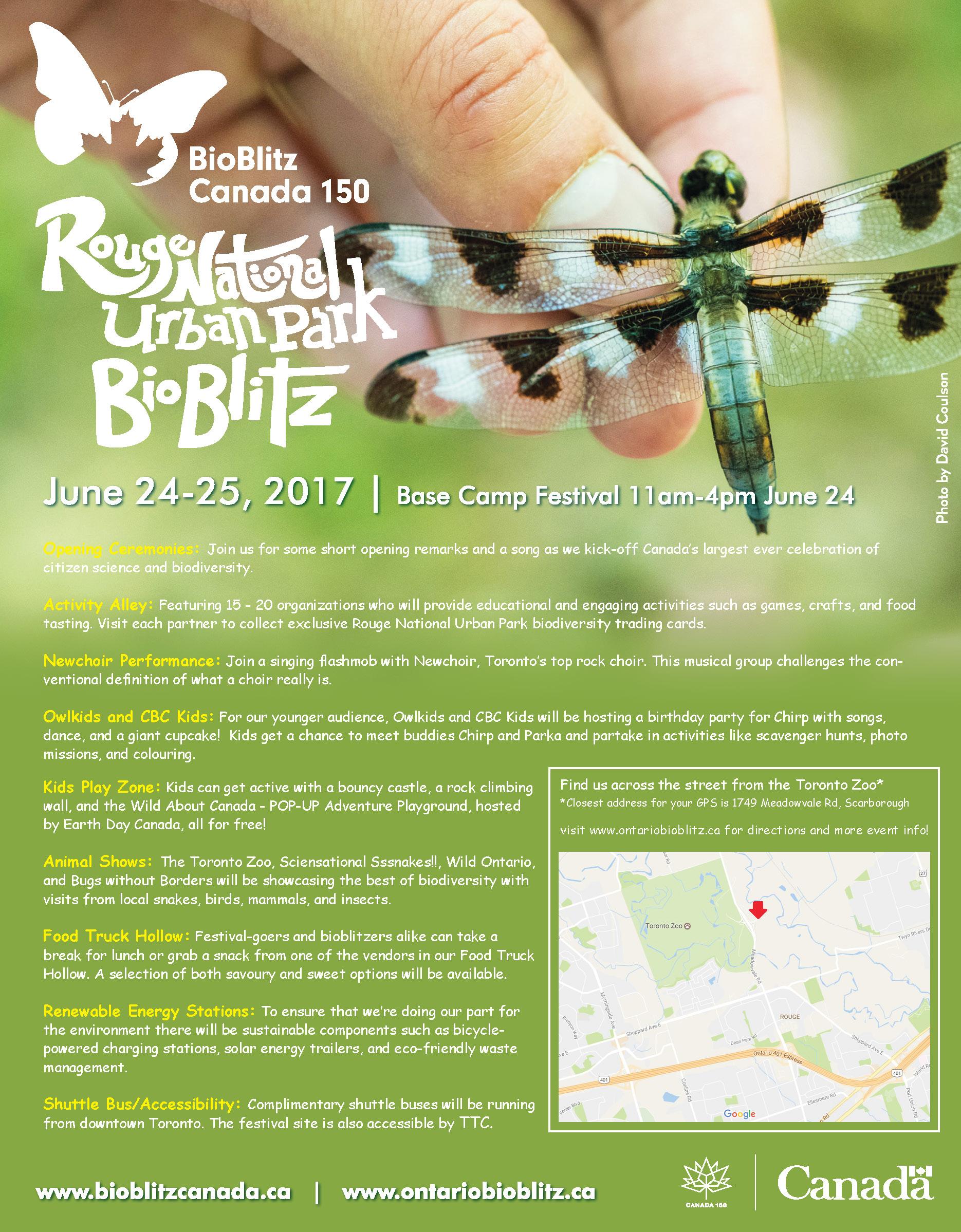 Base Camp Festival poster