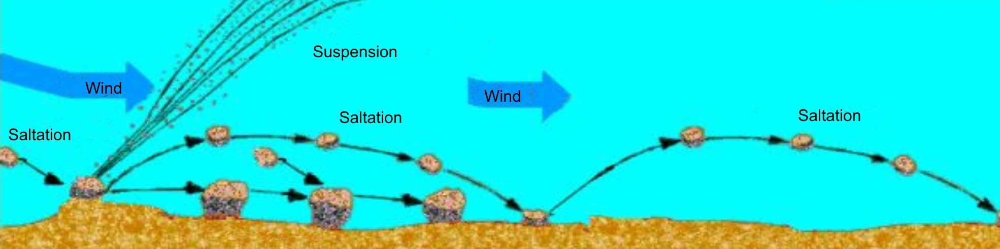 This diagram shows a close-up view of different wind erosion processes including saltation and suspension.