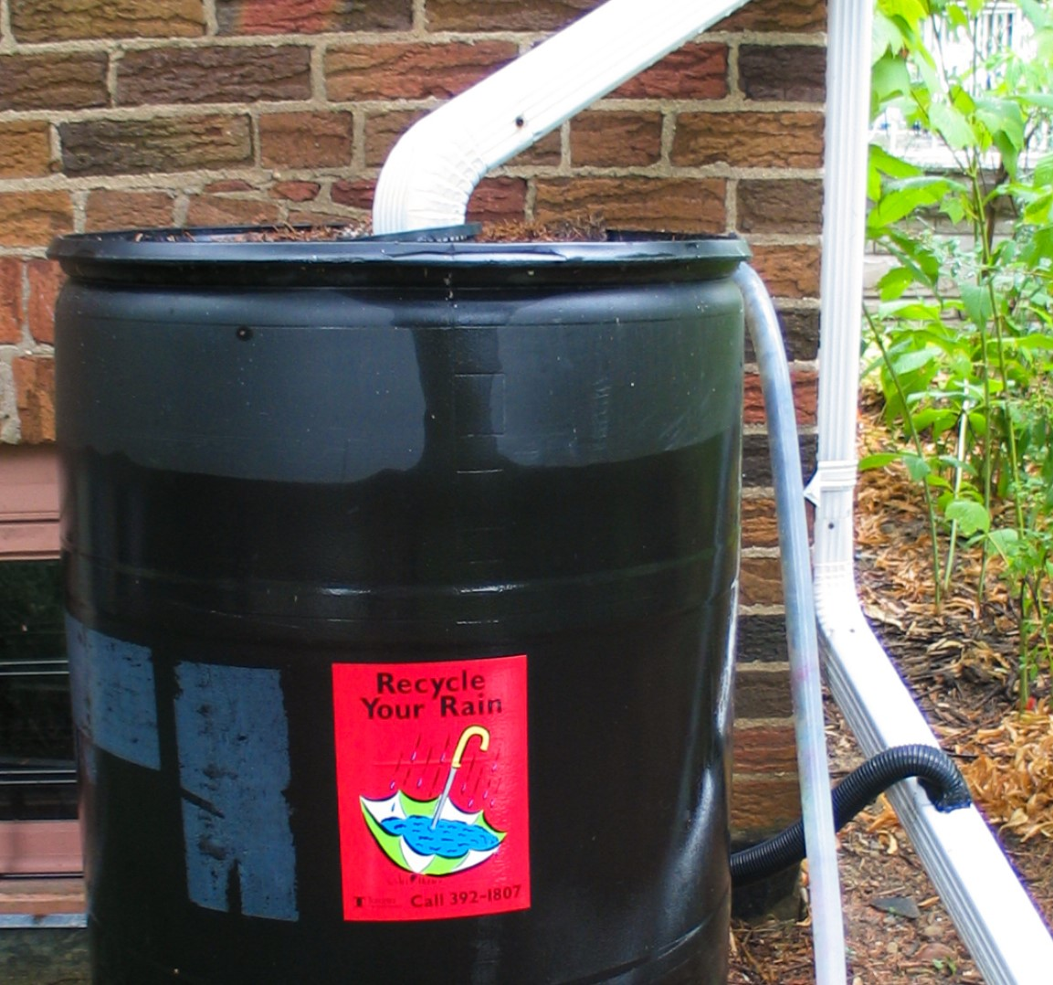 This image shows a black rain barrel against a red brick wall with a white aluminium downspout connected at the top of the barrel. A 2-inch diameter black overflow hose is seen connecting from the rain barrel to another section of downspout.