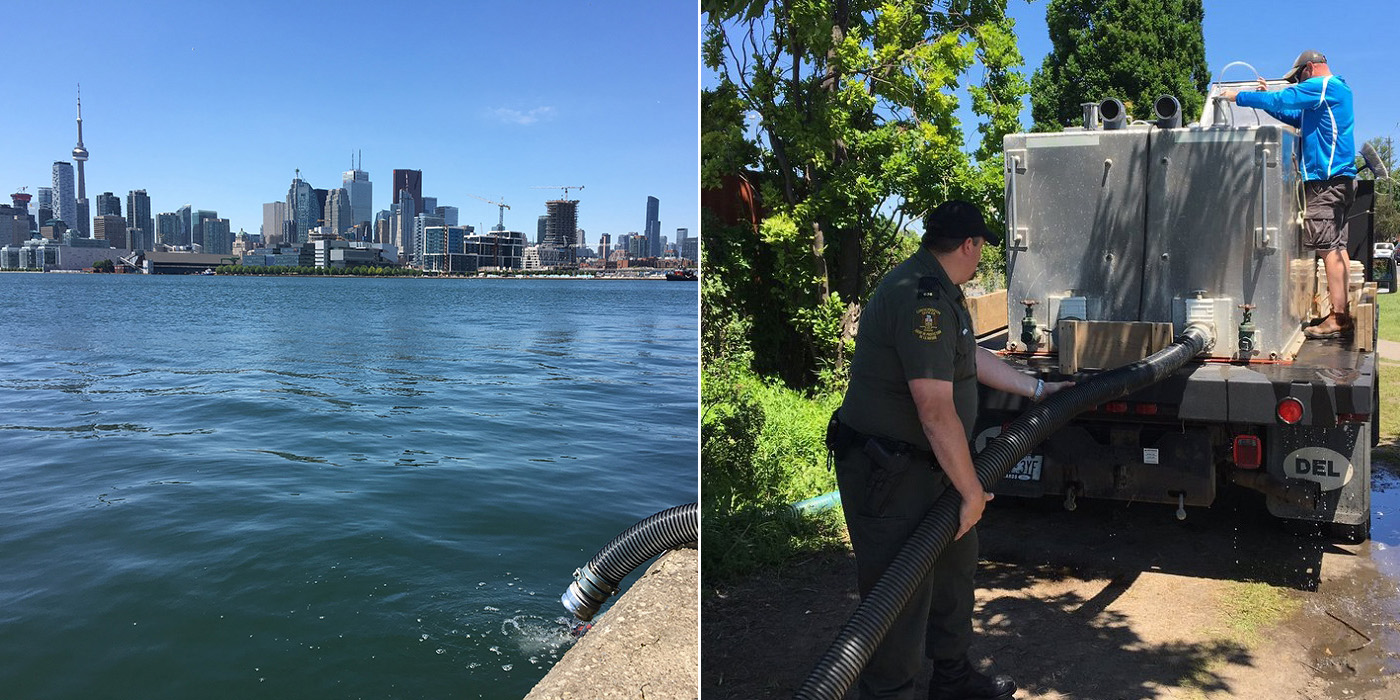 images of pipe and truck from release of walleye in Toronto Harbour
