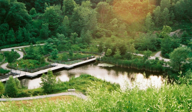 Evergreen Brickworks pond