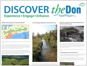 Discover the Don blog