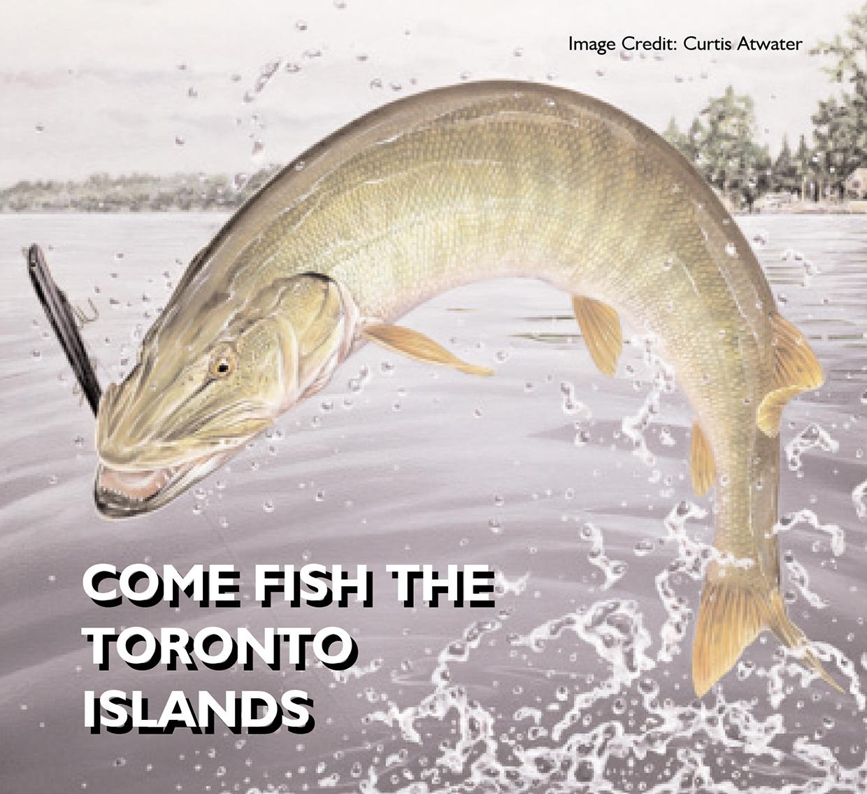 cover of Fishing Toronto Islands brochure