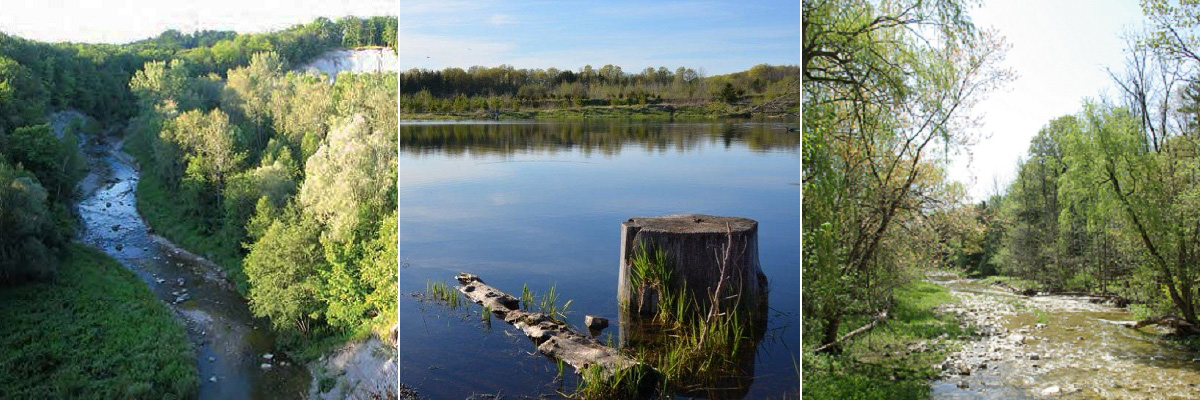 scenic images of Rouge Urban National Park