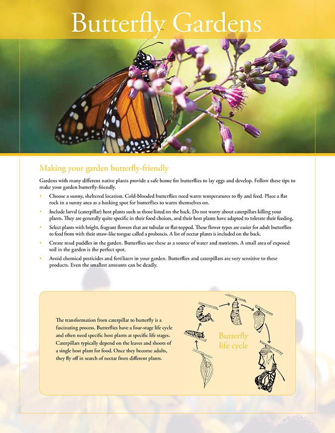 butterfly gardens resource sheet