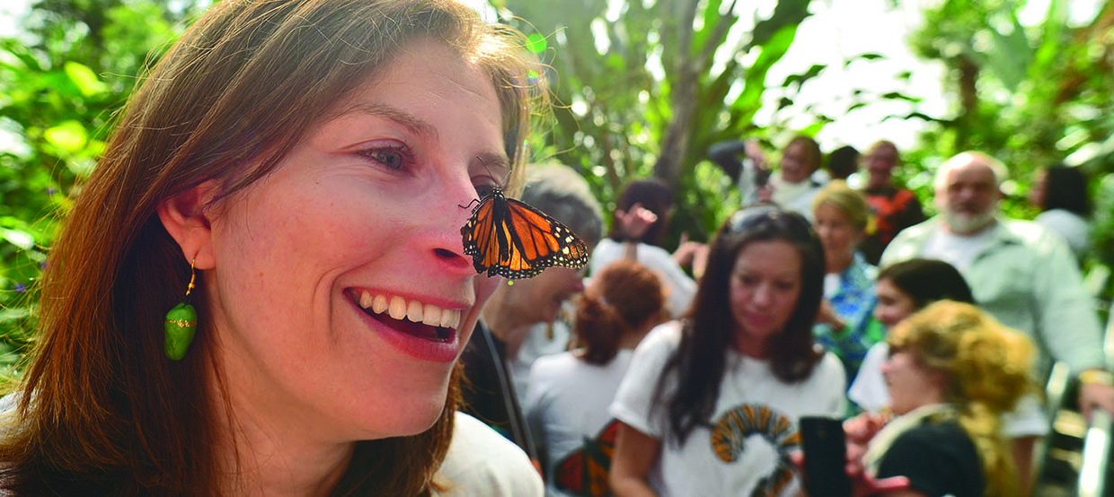 monarch butterfly rests on face of woman