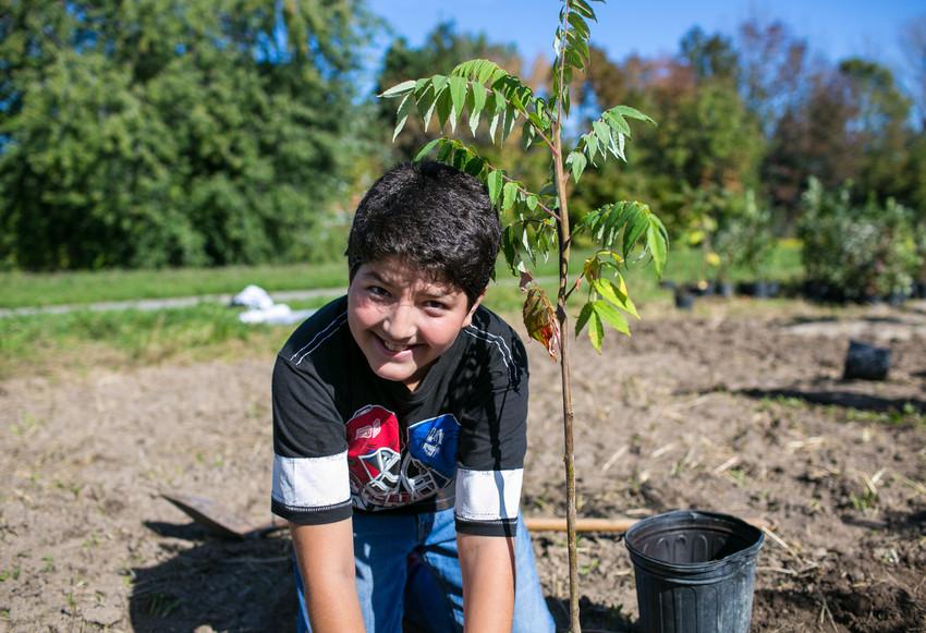 Boy tree planting