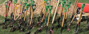 Community Planting and Tree Health Monitoring @ Heathercrest Park   Toronto   Ontario   Canada