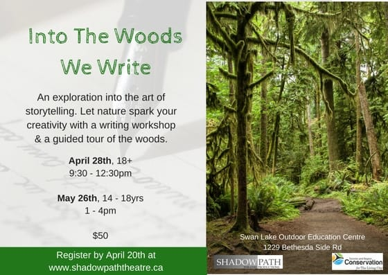 Into the Woods We Write