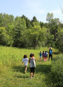 Altona Forest Hike: Altona Forest for Children @ Altona Forest Parking | Pickering | Ontario | Canada