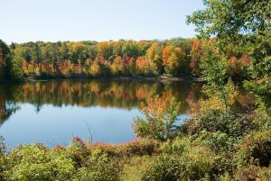 Fall Colours Hike @ Oak Ridges Corridor Conservation Reserve, ORT Trailhead Parking Lot