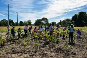 Take Pride in Pickering Tree Planting @ Waterfront Trail - Bottom of Frisco Road | Ontario | Canada