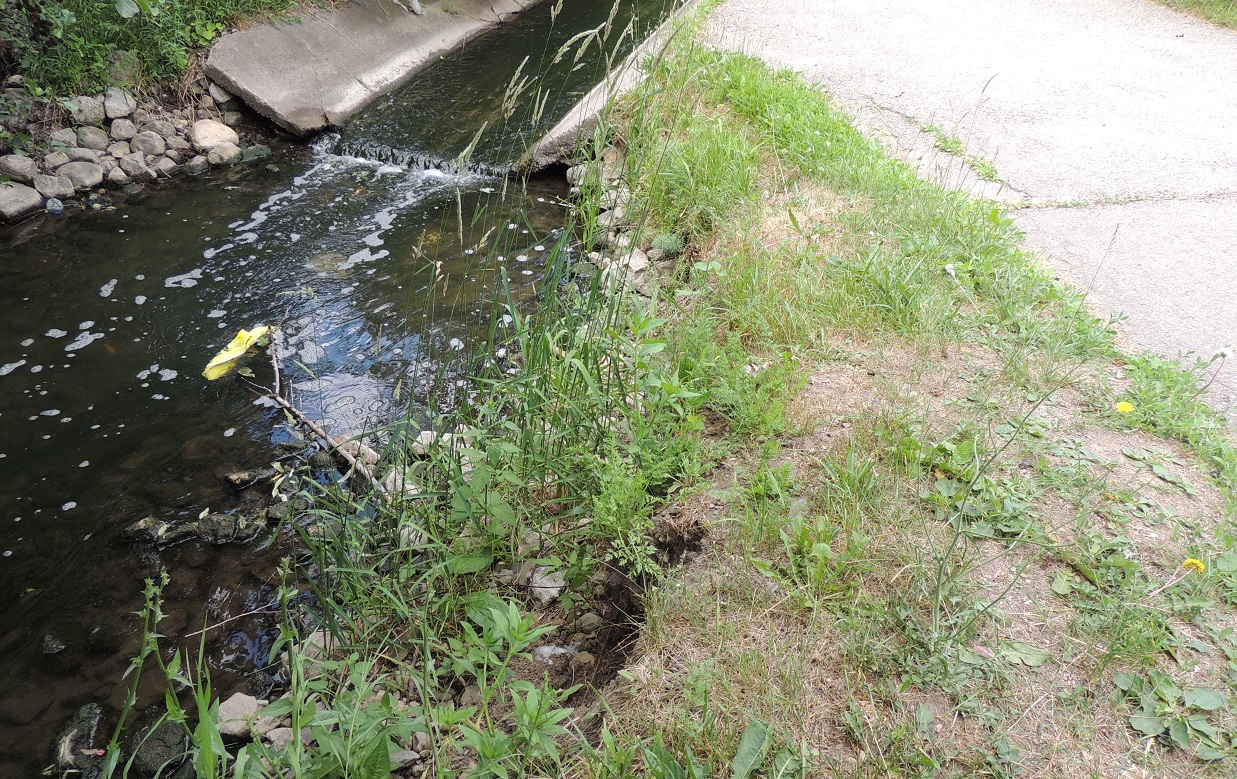 Concrete channel and rip rap revetment causing erosion of the bank adjacent to Chinguacousy Trail