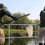 TRCA monitoring team members electrofishing at Toronto Island
