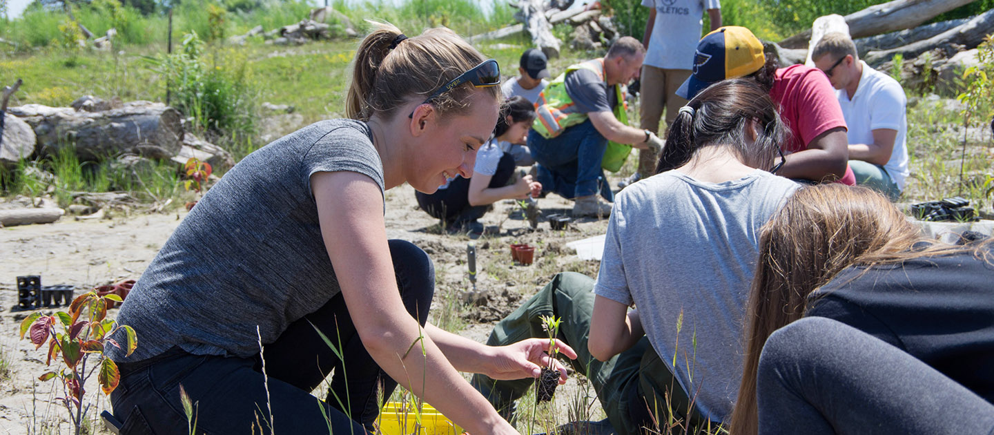 high school students take part in planting event