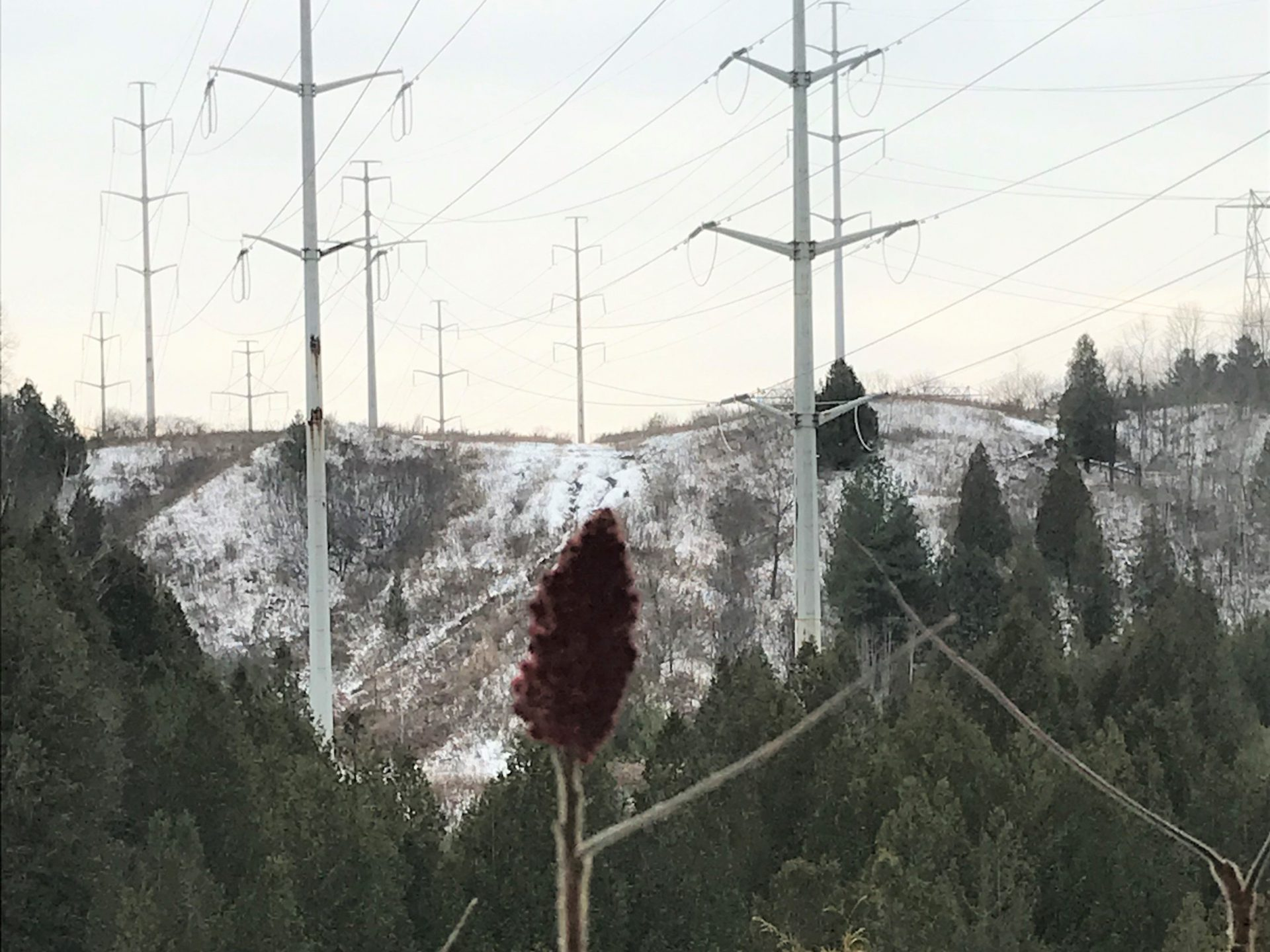 View of a ravine valley and hydro corridor in The Meadowy in winter